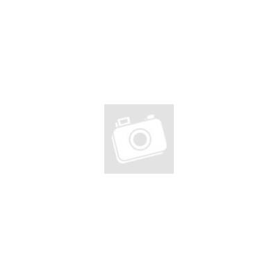 A Legenda bukása - A Legenda-trilógia 1. Meghan March